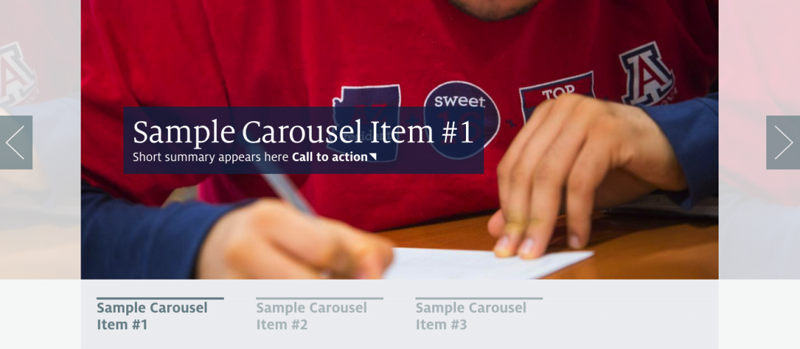 Sample carousel slider